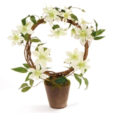Clematis Wreath Potted, 22'' | Plum & Post