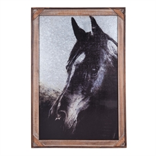 Domino Printed Horse Framed Art | Plum & Post